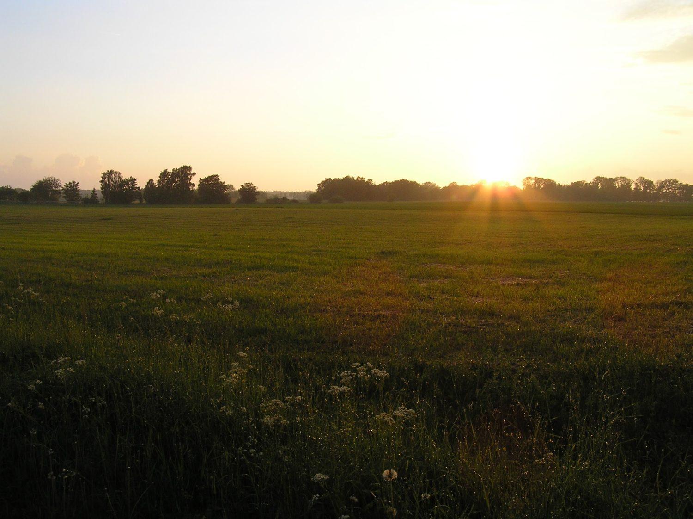 Åker solnedgång